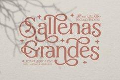 Sallenas Grandes|Elegant Serif Font Product Image 1