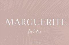 Marguerite Product Image 1