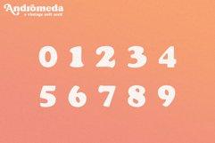 Andromeda // A Vintage Soft Serif Font Product Image 6