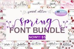 Spring Font Bundle Product Image 1