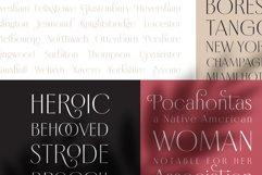 Borest - Elegant Roman Sans Serif Product Image 4