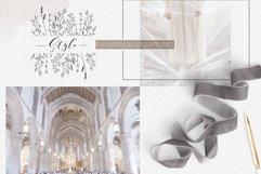 Line art botanical illustrations Product Image 5