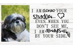 Furever your shadow pet memorial Product Image 1