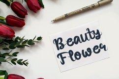 Rose Berry - Beautiful Handwritten Font Product Image 2