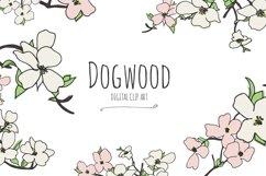 Dogwood - Digital Clip Art Product Image 1
