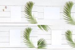 Palm Dreams Bundle Mockups Product Image 4