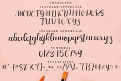 Sahyan Maglin - Luxury Calligraphy Font Product Image 7