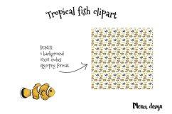 Tropical fish set Product Image 3
