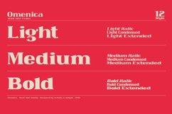 Omenica - Serif font Family Product Image 2