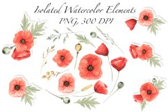 Red Poppies and Wild Grasses, Watercolor clip art, PNG, JPG Product Image 6