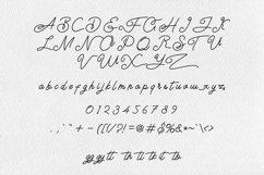 Airlangga Script Product Image 4