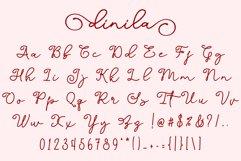 Dinila Script Product Image 5