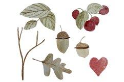 Autumn clipart Watercolor oak leaf, red berries, acorn, twig Product Image 4