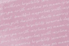 Blossomberry Script Font Product Image 5