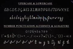 Pasopati Handwritten Script Font Product Image 6