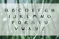 LEAFY VALLEY - Hand-drawn Font DUO Product Image 5