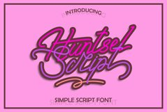 Huntsel Script Product Image 1