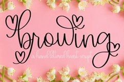 Web Font Browing - A Script With Hearts & Swooshes Product Image 1