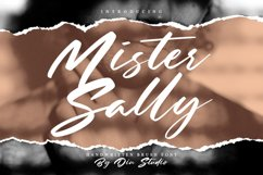 Mister Sally-Beautiful Handwritten BrushFont Product Image 1