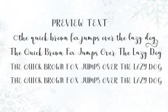 The Winter | WEB FONT Product Image 6