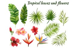 Watercolor tropical leaves and flowers Product Image 1