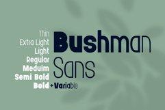Bushman font set Product Image 4