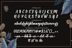 Maria Aishane Script Product Image 5