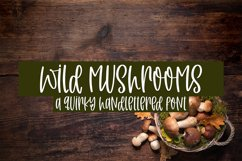 Wild Mushrooms - A Quirky Handlettered Font Product Image 1