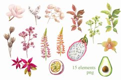 Watercolor flowers,exotic fruits. Product Image 2
