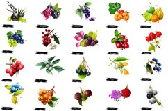 Berries. Digital art collection 1 Product Image 2