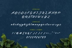 Beard canye - Modern And Clean Script Typeface Product Image 6