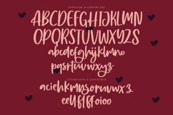 Web Font Burgundy - Beautiful Script Font Product Image 4