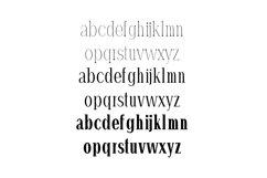 Hommer Minimal Serif Typeface Product Image 3