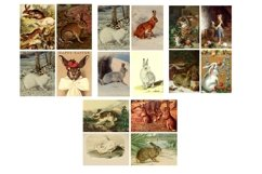 Easter Bunny and Rabbit Vintage Illustrations 1 PDF Product Image 3