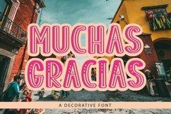 Web Font Muchas Gracias - a decorative font Product Image 1