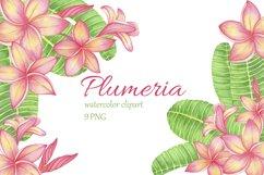 Tropical Flower Plumeria Frangipani. Watercolor clipart Product Image 1