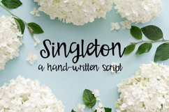 PN Singleton Product Image 1