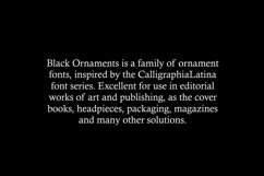 Black Ornaments  Product Image 6