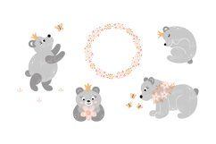 Baby Bear Collection Product Image 2
