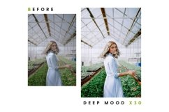 Deep Mood - Lightroom & Photoshop Camera Raw Presets Product Image 26
