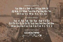 Web Font Leocadia Font Product Image 5