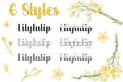 Lilytulip Script Font Product Image 3