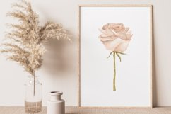 Boho rose printable, Digital rose poster, Floral wall print Product Image 5