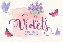 violets flowers watercolor clip art set Product Image 5