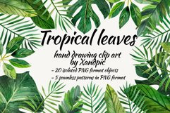 Watercolor tropical leaves ,clip art. Drawing Tropical Product Image 1