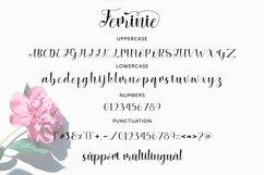 Feminie Italic Script Product Image 3