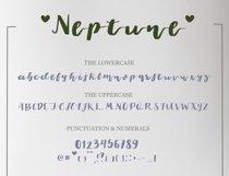 Neptune Product Image 5