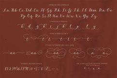 Aesthetics luxury script font Product Image 4