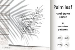 Palm leaf. Hand-drawn sketch and seamless patterns with it. Product Image 1