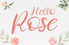 Costly Dishy Modern Handwritten Font Product Image 4